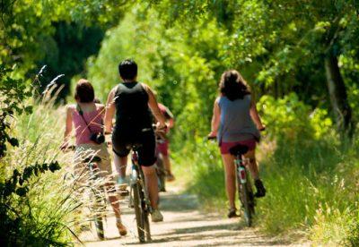 Locations de vélos à assistance électrique